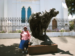 Buffalo at the Church
