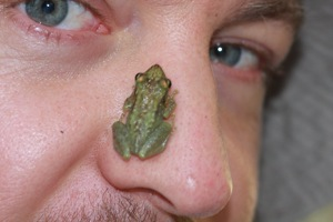 This tree frog hopped on his nose, when Flo tried to take a photograph