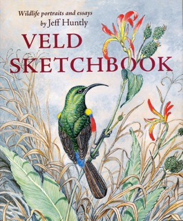 Veld Sketchbook